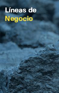 Lineas-de-Negocio_1