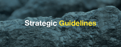 Strategic Guidelines