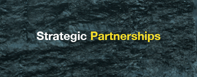 Strategic Partnerships Main