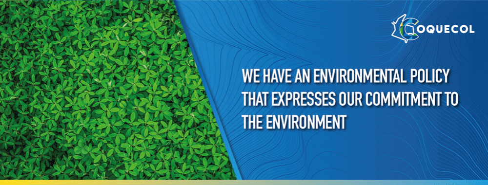 ambiental_eng-banner_web-COQ